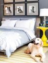 اللمسة الشخصية وجود غرفة نوم جميلة لايعني انه يجب ان تكون خالية من الاغراض الشخصية. فقد تختار وضع رسومات هزلية وصور فوتوغرافية بدلاً من الاعمال الفنية