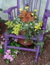 استخدام الكراسي القديمة لزراعة الازهار فيها