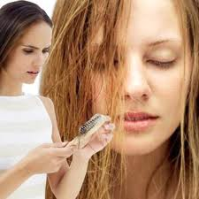 علاج مشاكل شعرك بالاعشاب الطبيعية