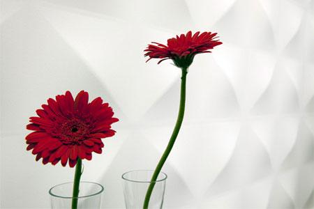 افكار تصاميم ديكورات جدران ثلاثية الابعاد9