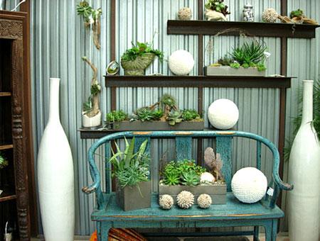 تزيين داخل المنزل بالنباتات12