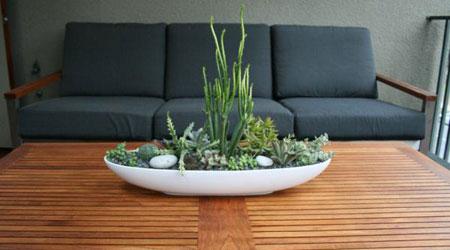 تزيين داخل المنزل بالنباتات9