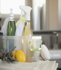 Cleaning supplies --- Image by © Tammy Hanratty/Corbis